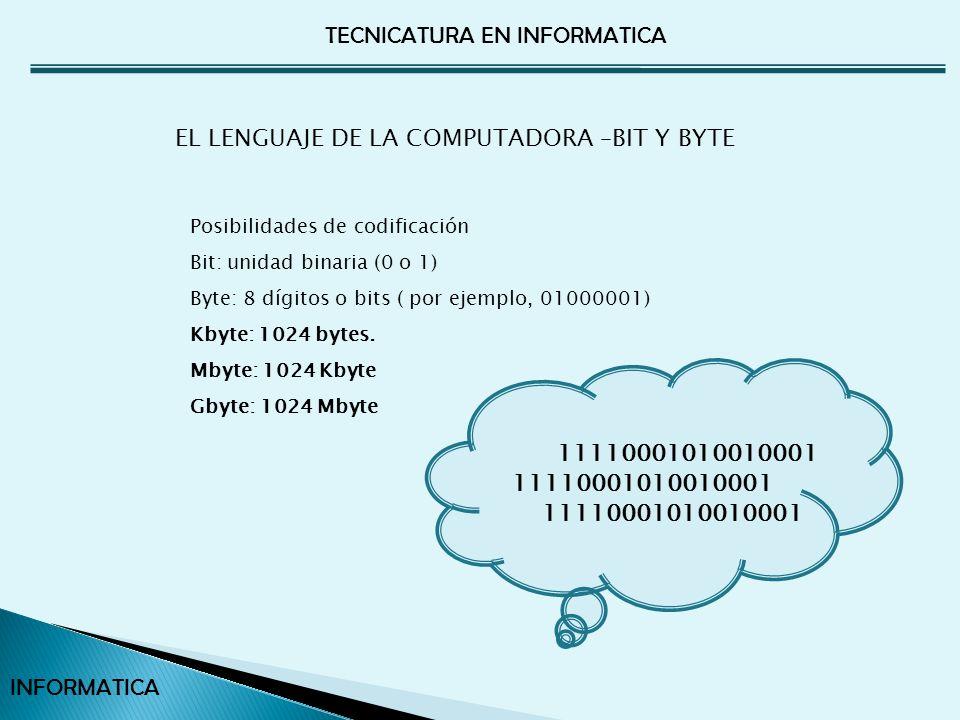 EL LENGUAJE DE LA COMPUTADORA –BIT Y BYTE