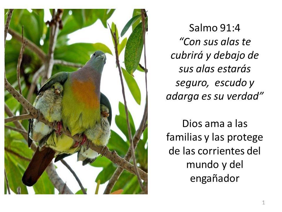 Salmo 91:4 Con sus alas te cubrirá y debajo de sus alas estarás seguro, escudo y adarga es su verdad Dios ama a las familias y las protege de las corrientes del mundo y del engañador
