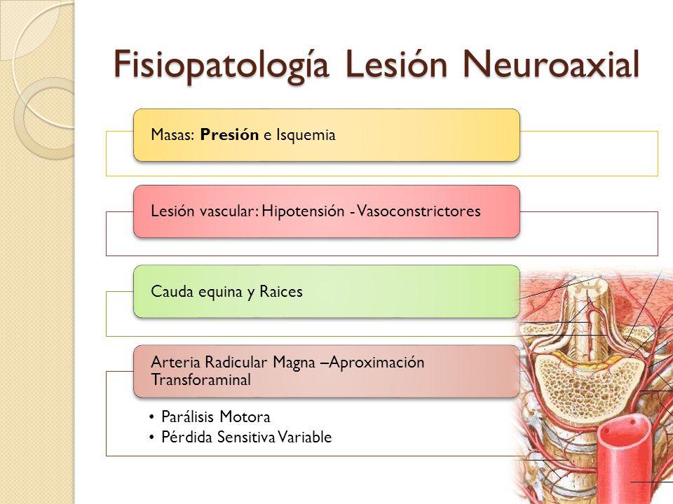 Fisiopatología Lesión Neuroaxial