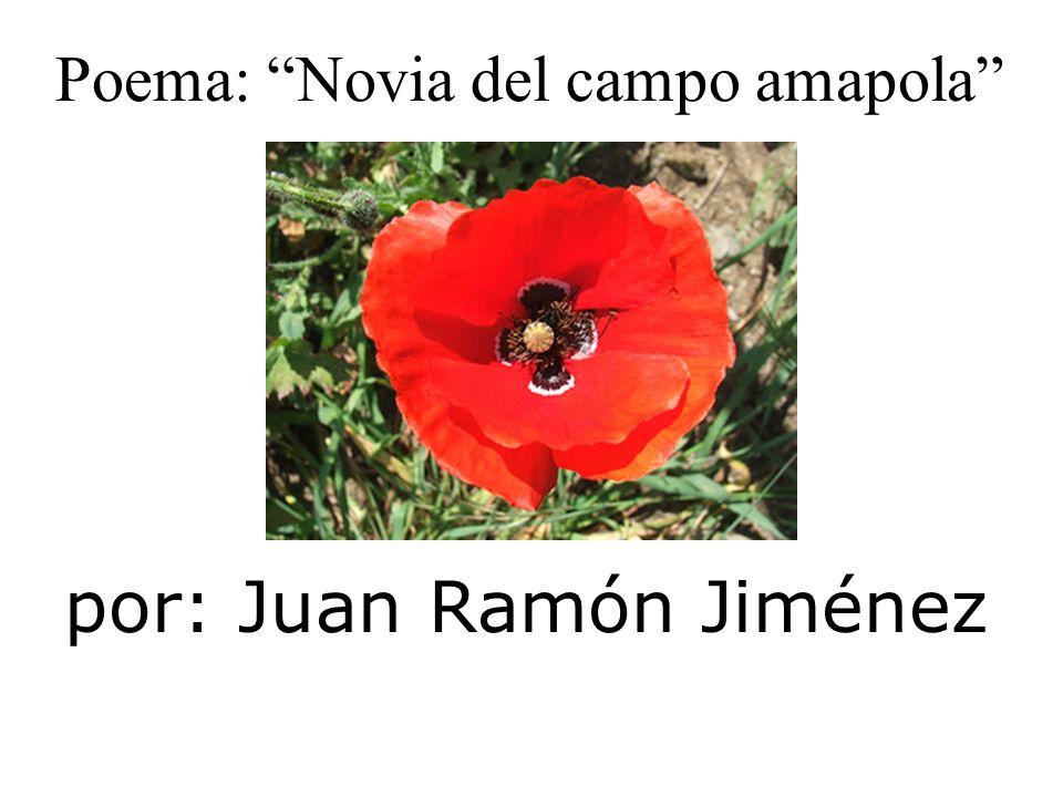 por: Juan Ramón Jiménez