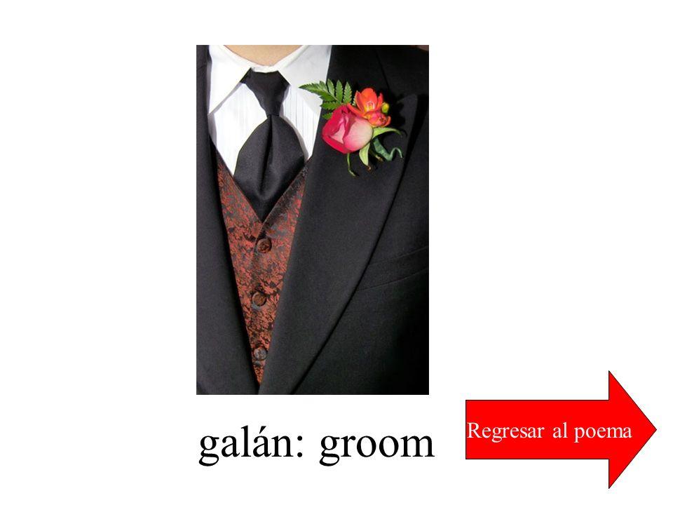 Regresar al poema galán: groom