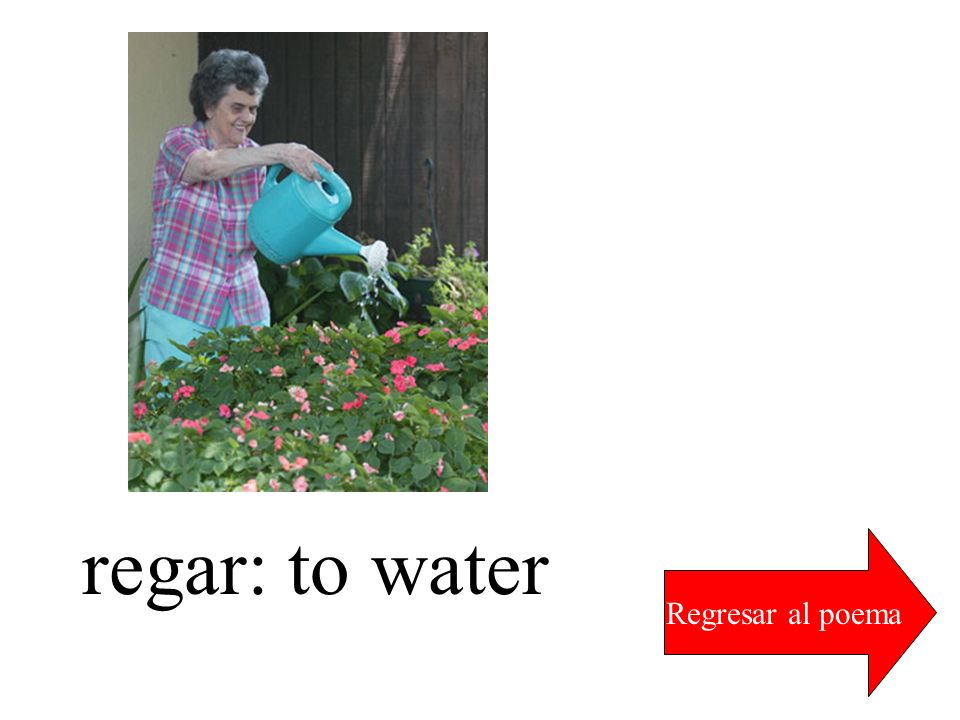 regar: to water Regresar al poema