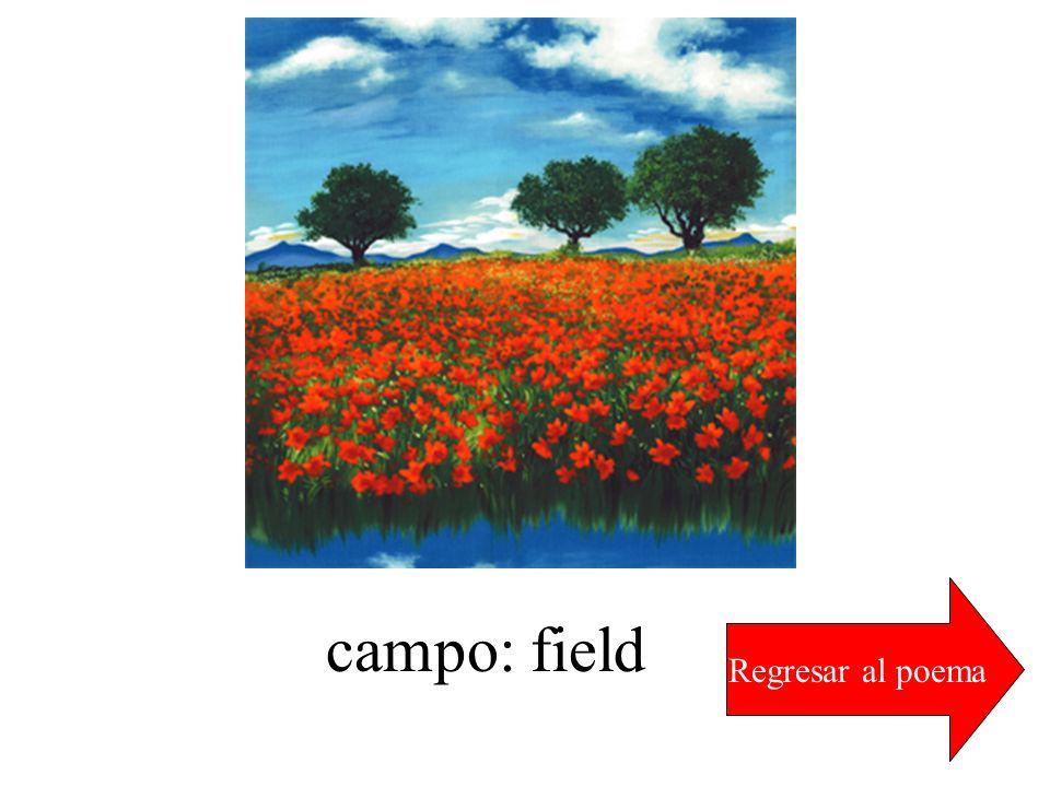 Regresar al poema campo: field