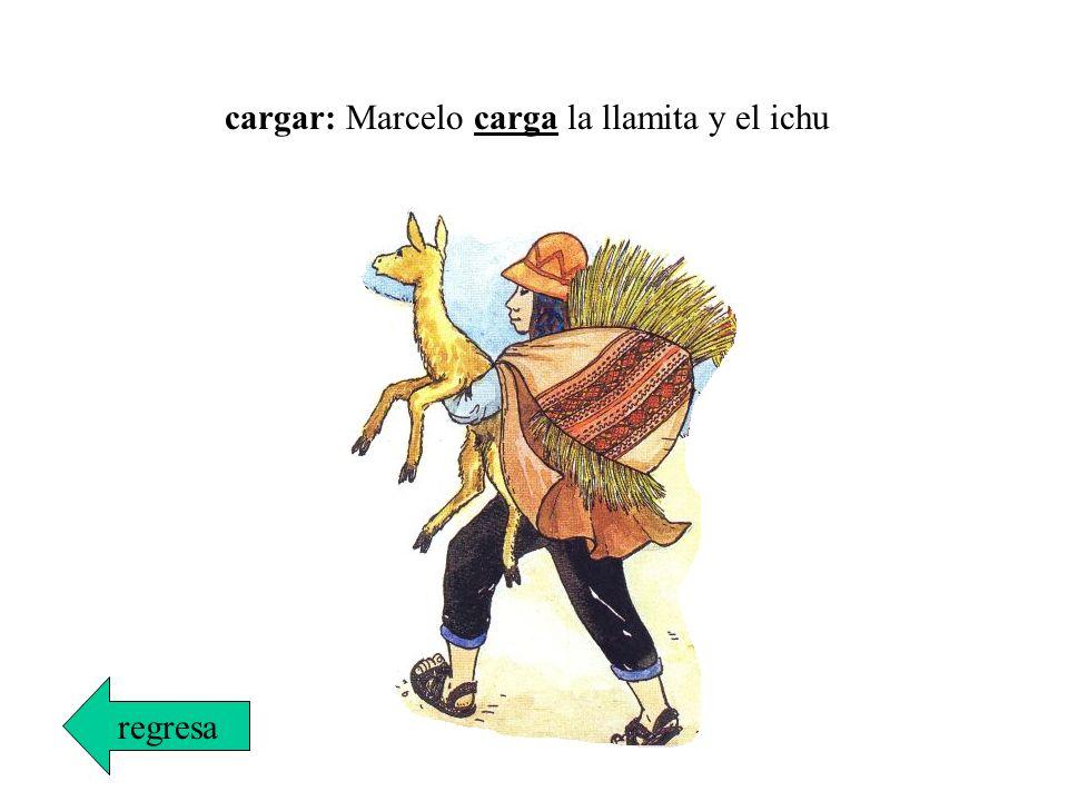 cargar: Marcelo carga la llamita y el ichu