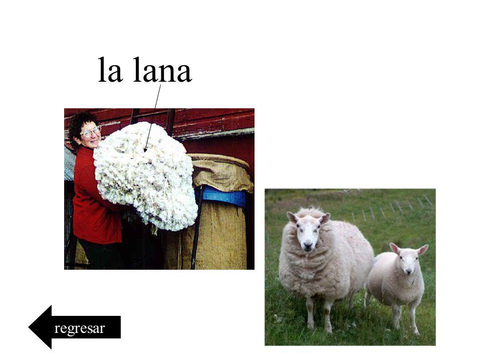 la lana regresar
