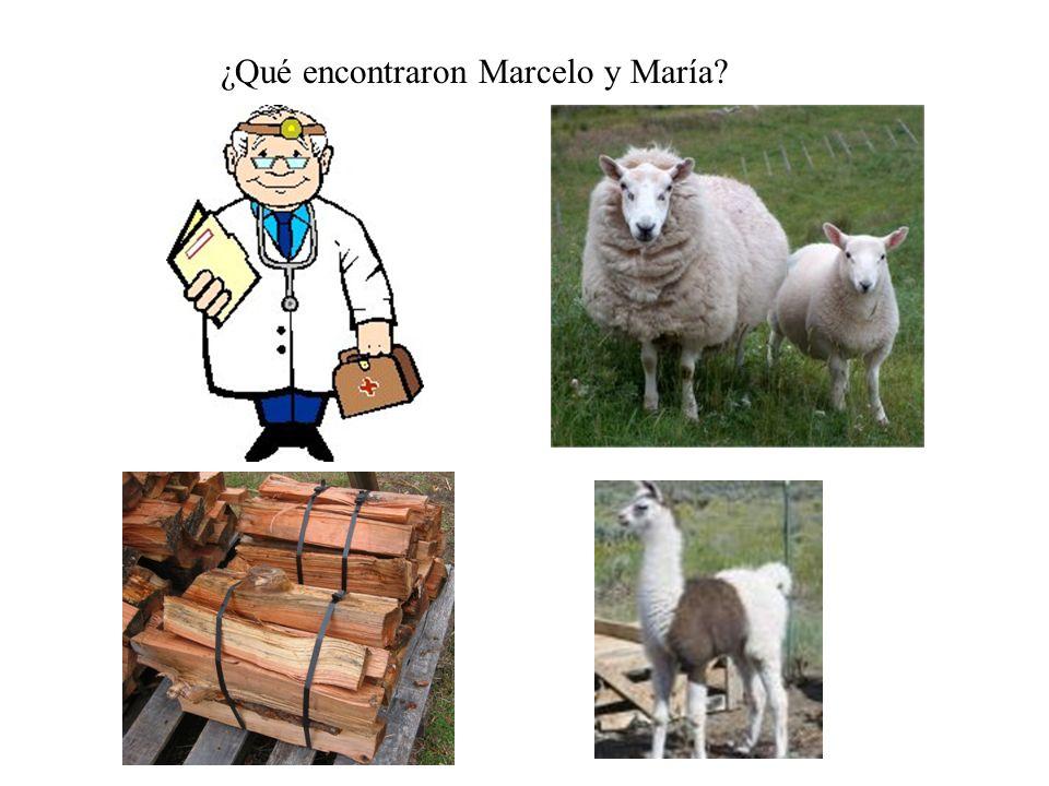 ¿Qué encontraron Marcelo y María