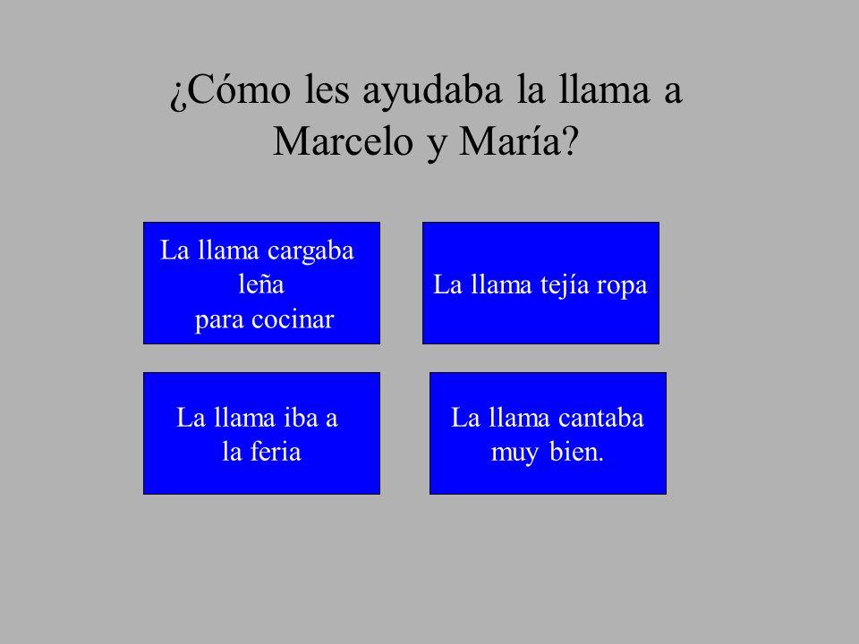 ¿Cómo les ayudaba la llama a Marcelo y María