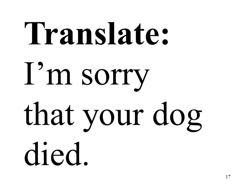 Translate: I'm sorry that your dog died.