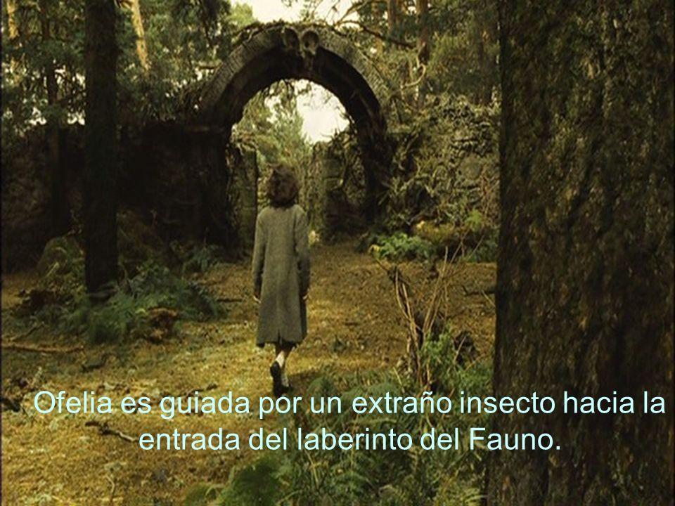 Ofelia es guiada por un extraño insecto hacia la entrada del laberinto del Fauno.