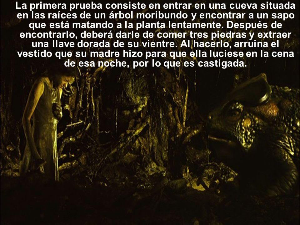 La primera prueba consiste en entrar en una cueva situada en las raíces de un árbol moribundo y encontrar a un sapo que está matando a la planta lentamente.