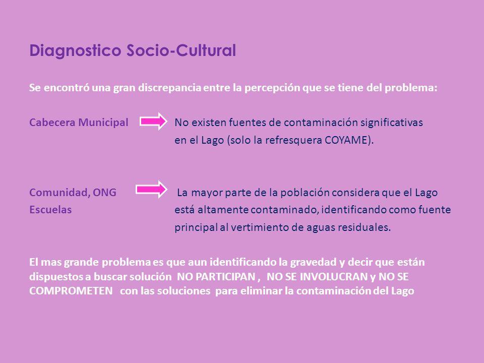 Diagnostico Socio-Cultural