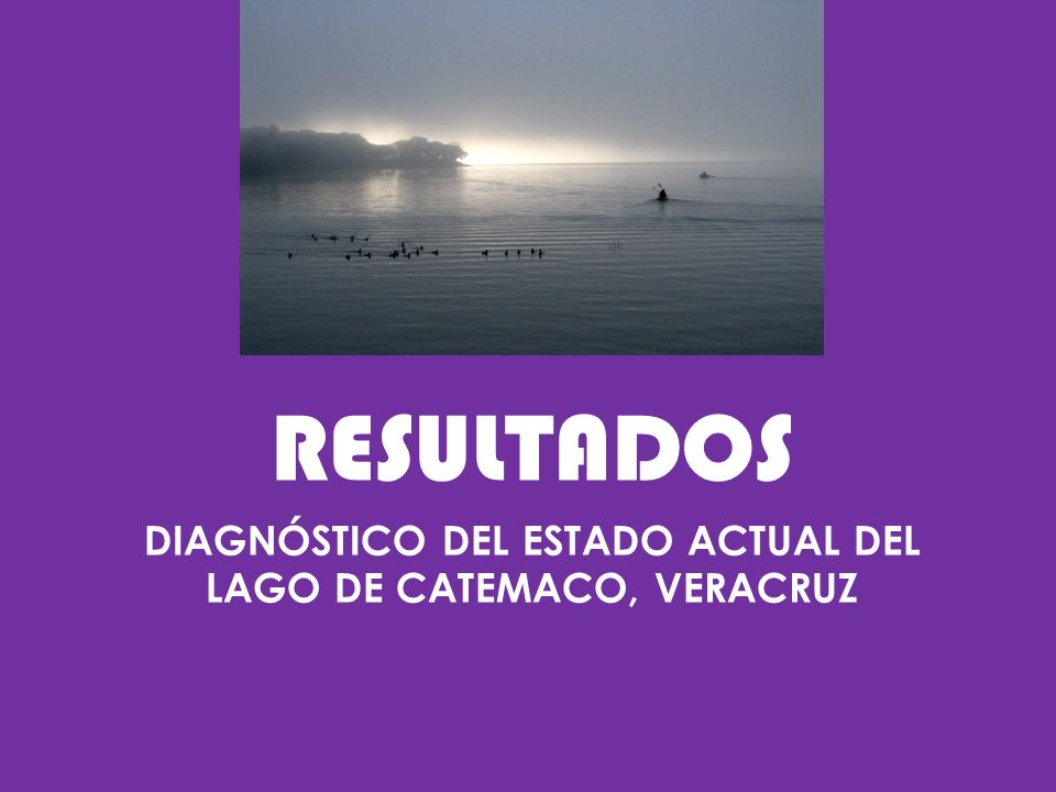 DIAGNÓSTICO DEL ESTADO ACTUAL DEL LAGO DE CATEMACO, VERACRUZ
