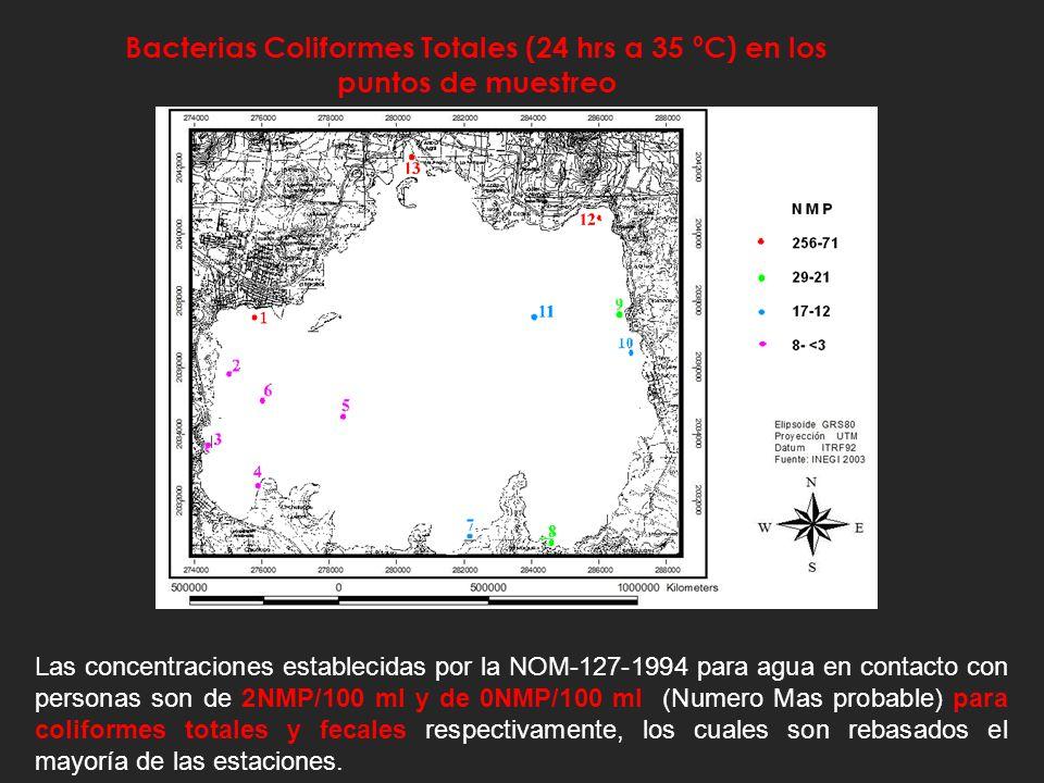 Bacterias Coliformes Totales (24 hrs a 35 ºC) en los puntos de muestreo
