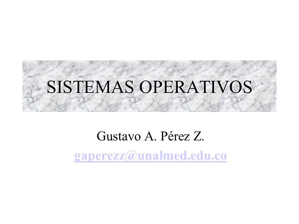 Gustavo A. Pérez Z. gaperezz@unalmed.edu.co