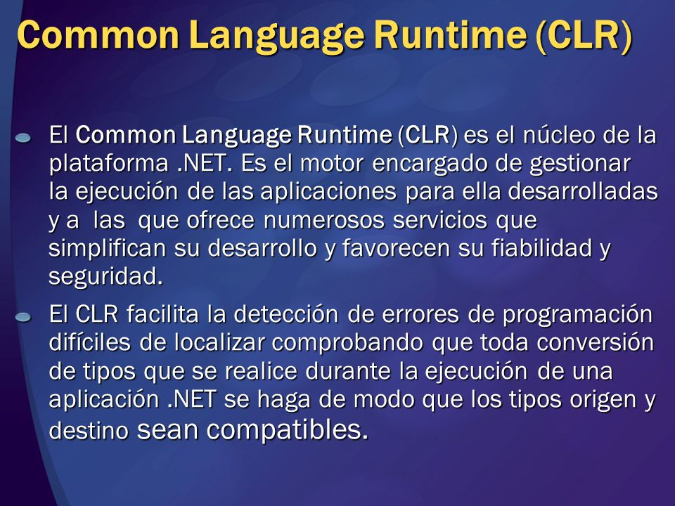 Common Language Runtime (CLR)