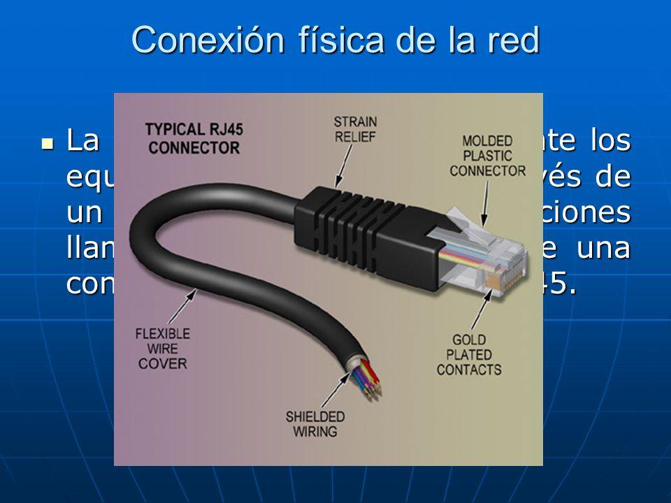 Conexión física de la red