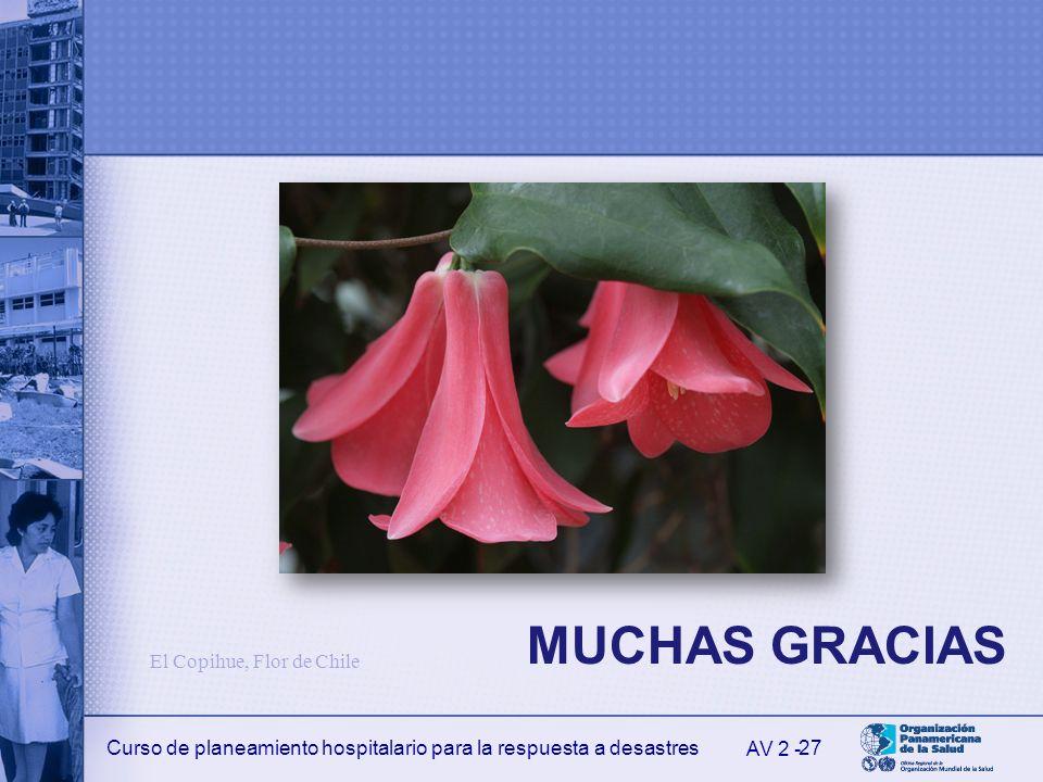 MUCHAS GRACIAS El Copihue, Flor de Chile AV 2 -