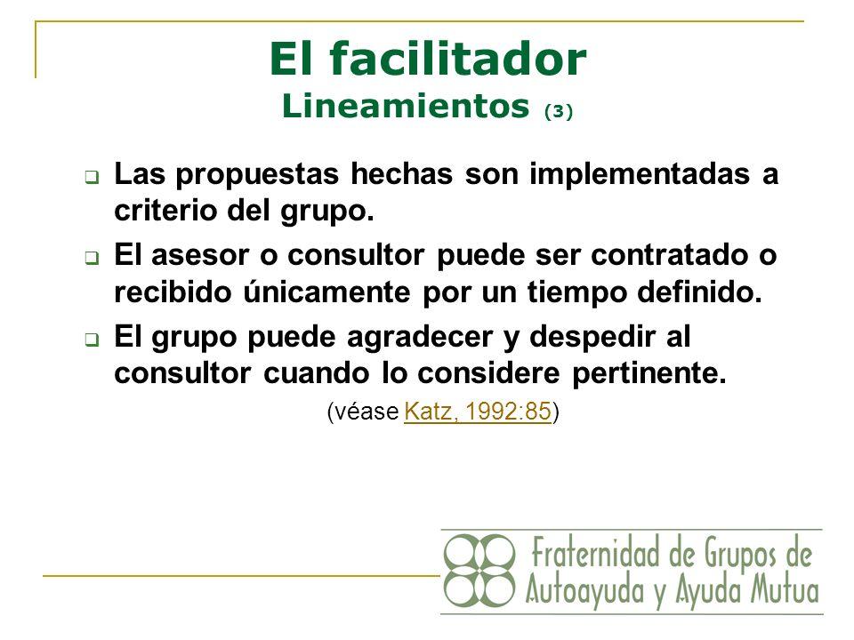 El facilitador Lineamientos (3)