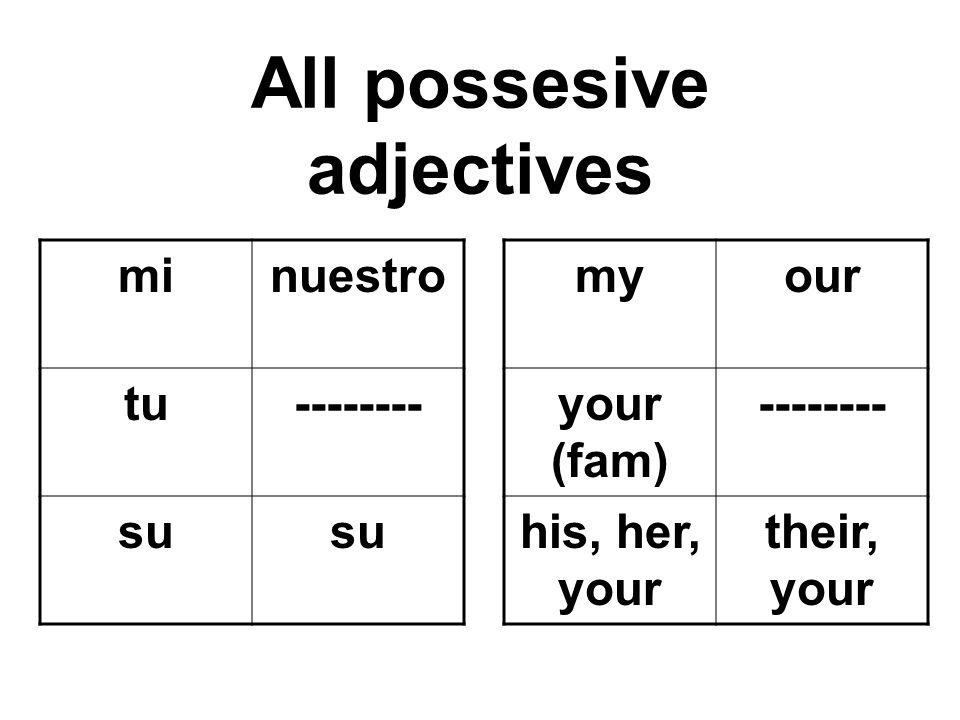 All possesive adjectives