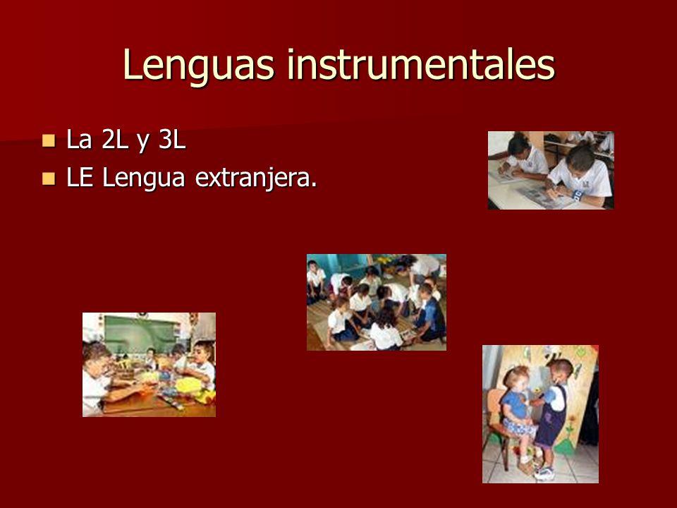 Lenguas instrumentales