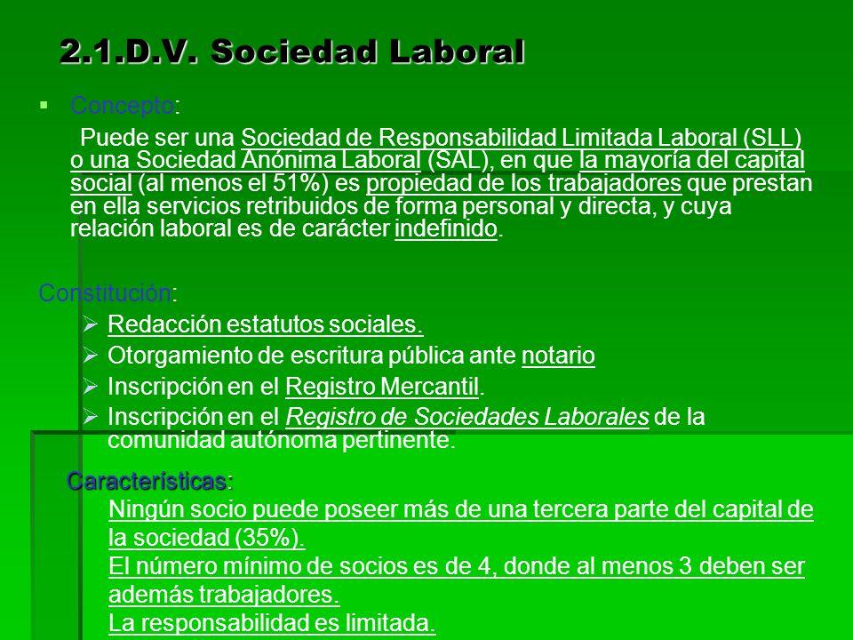 2.1.D.V. Sociedad Laboral Concepto: