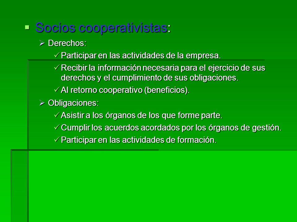 Socios cooperativistas: