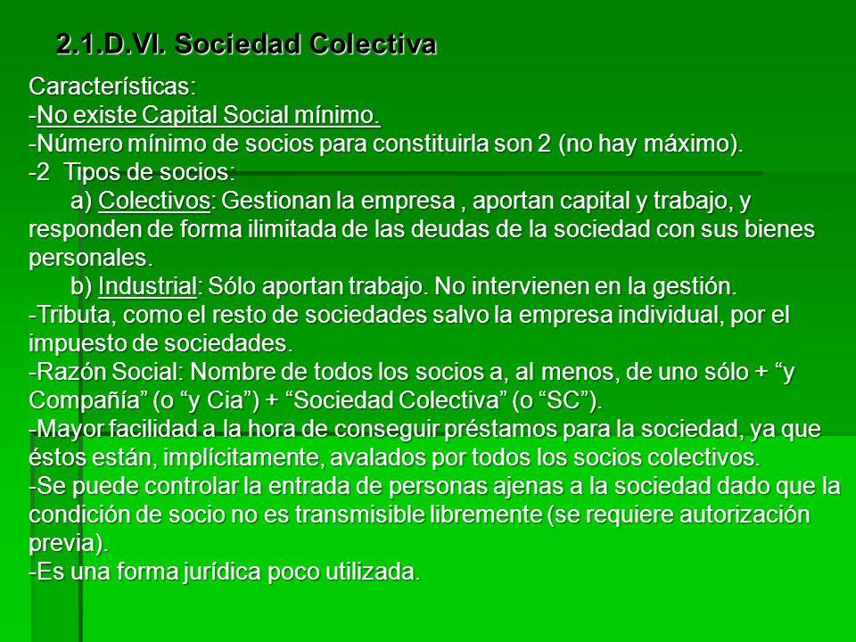 2.1.D.VI. Sociedad Colectiva