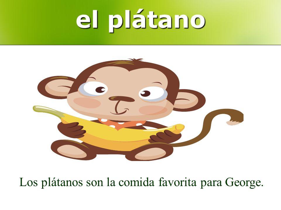el plátano Los plátanos son la comida favorita para George.
