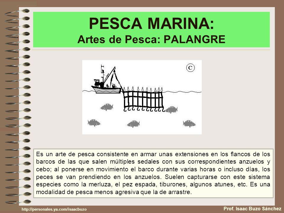 PESCA MARINA: Artes de Pesca: PALANGRE
