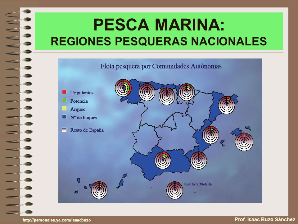 PESCA MARINA: REGIONES PESQUERAS NACIONALES