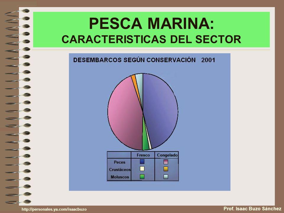 PESCA MARINA: CARACTERISTICAS DEL SECTOR