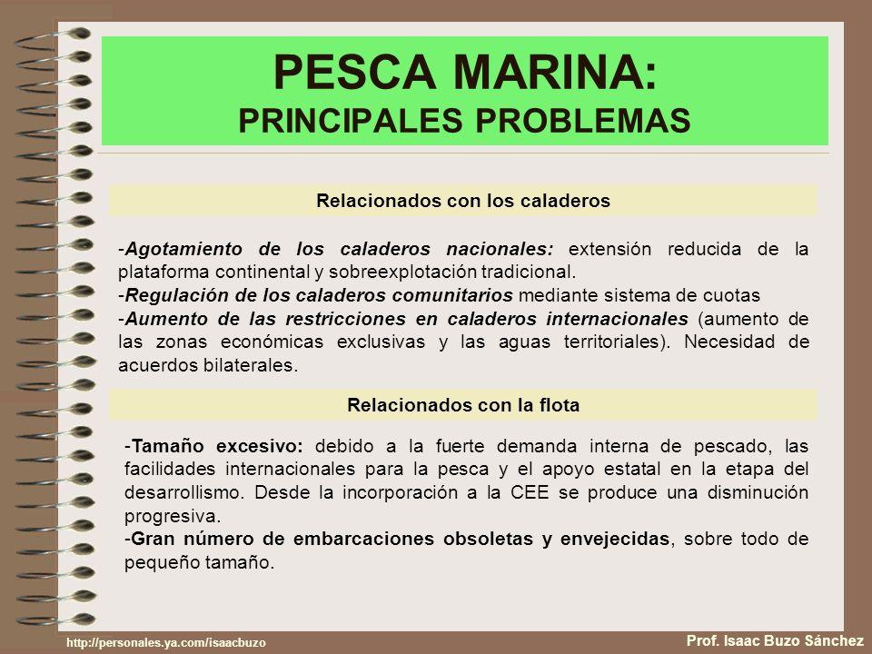 PESCA MARINA: PRINCIPALES PROBLEMAS