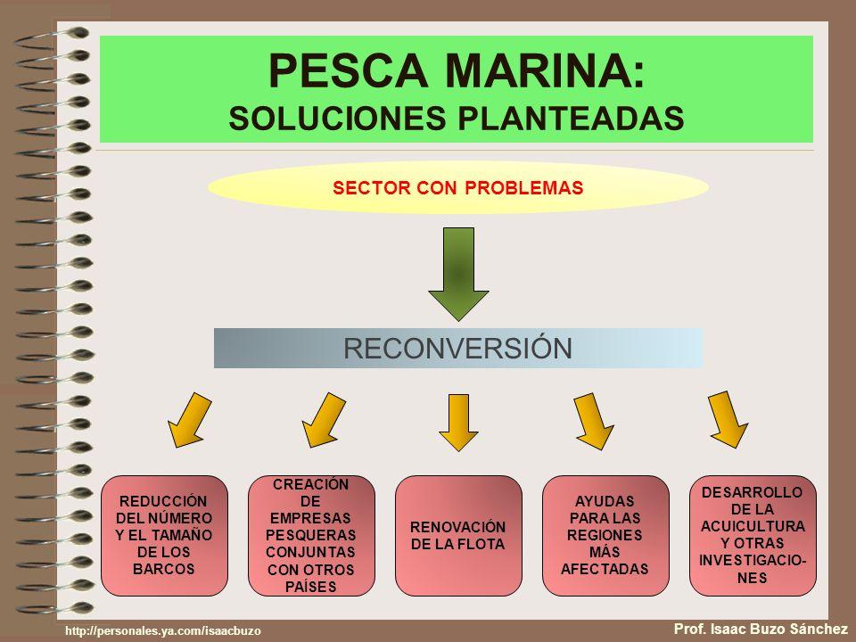 PESCA MARINA: SOLUCIONES PLANTEADAS