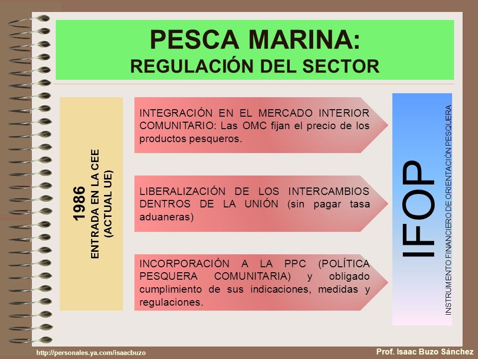PESCA MARINA: REGULACIÓN DEL SECTOR