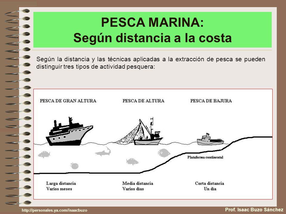 PESCA MARINA: Según distancia a la costa