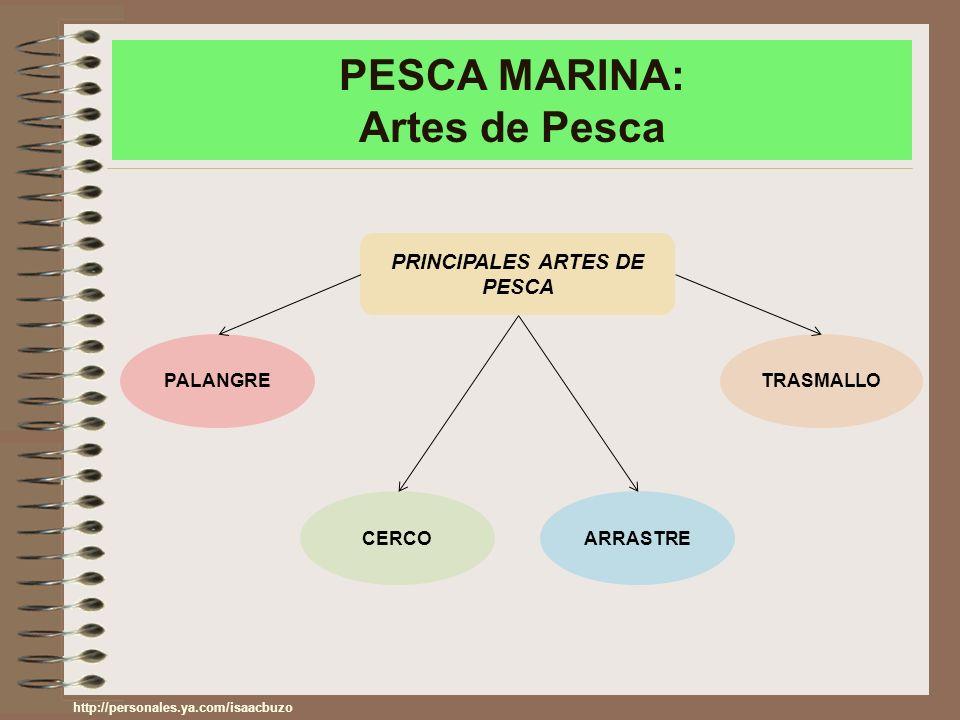 PESCA MARINA: Artes de Pesca