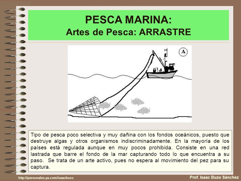 PESCA MARINA: Artes de Pesca: ARRASTRE