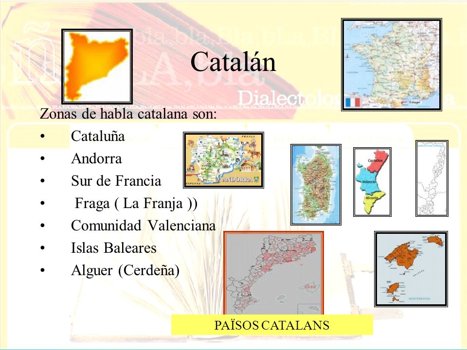 Catalán Zonas de habla catalana son: Cataluña Andorra Sur de Francia