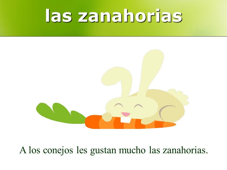 las zanahorias A los conejos les gustan mucho las zanahorias.