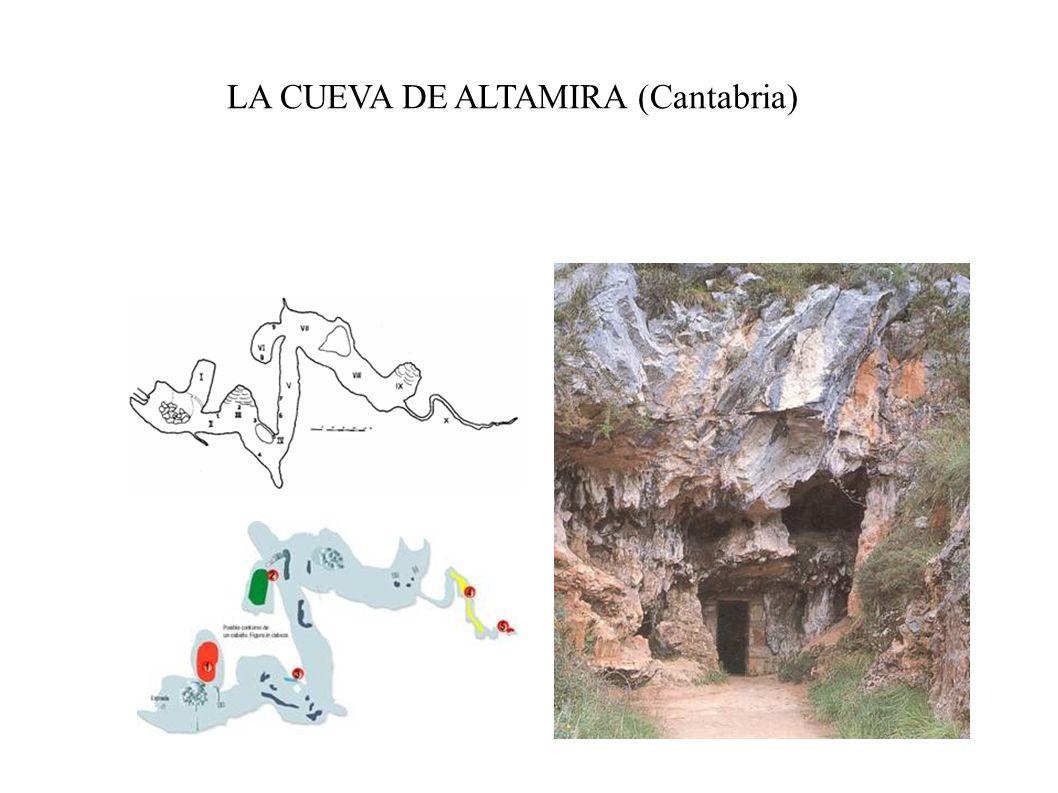 LA CUEVA DE ALTAMIRA (Cantabria)