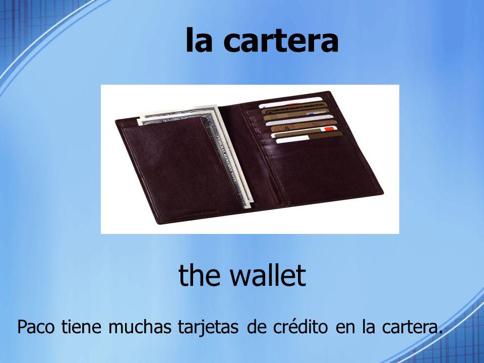 la cartera the wallet Paco tiene muchas tarjetas de crédito en la cartera.