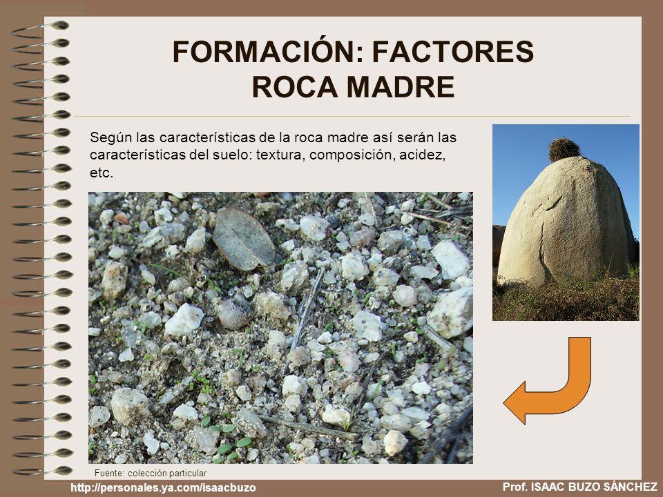 FORMACIÓN: FACTORES ROCA MADRE