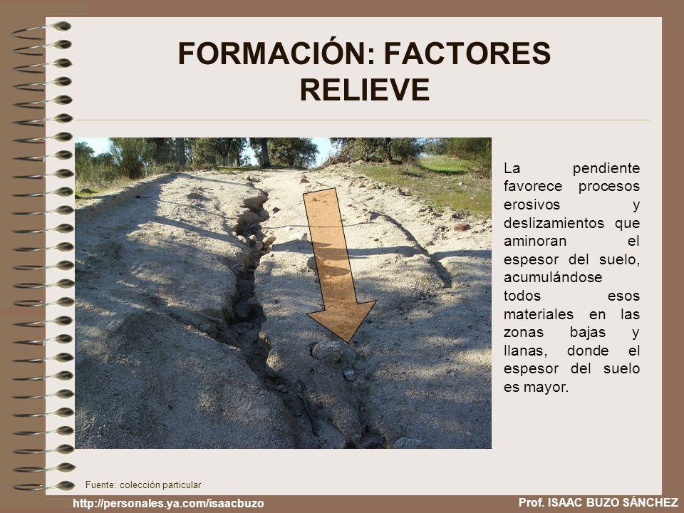FORMACIÓN: FACTORES RELIEVE
