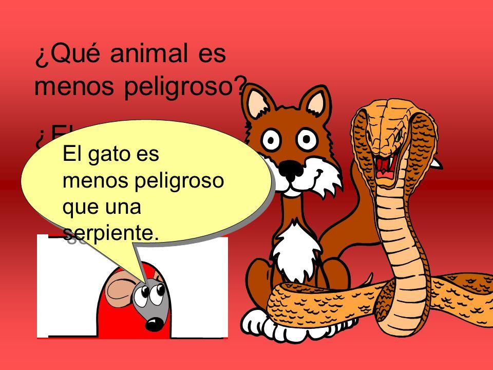 ¿Qué animal es menos peligroso ¿El gato o la serpiente