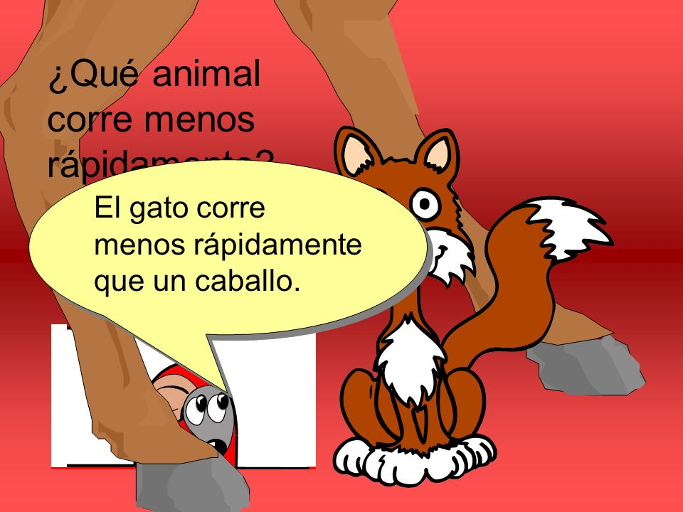 ¿Qué animal corre menos rápidamente