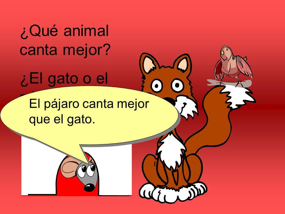 ¿Qué animal canta mejor ¿El gato o el pájaro
