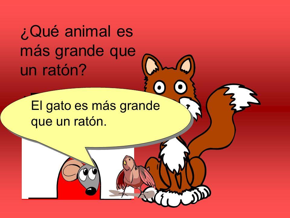¿Qué animal es más grande que un ratón