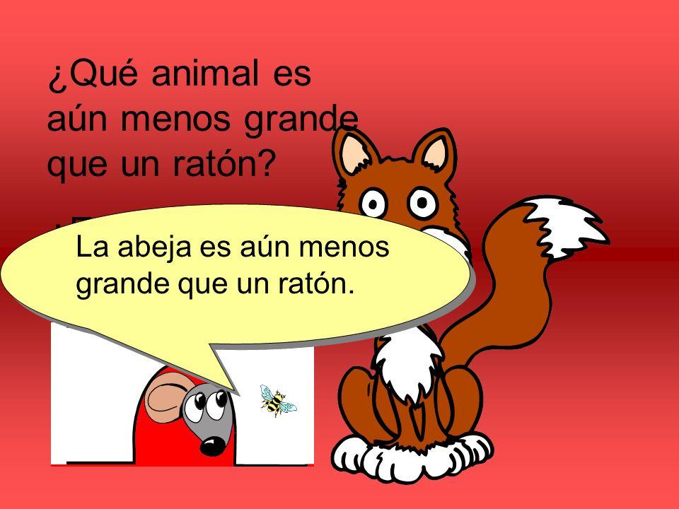 ¿Qué animal es aún menos grande que un ratón