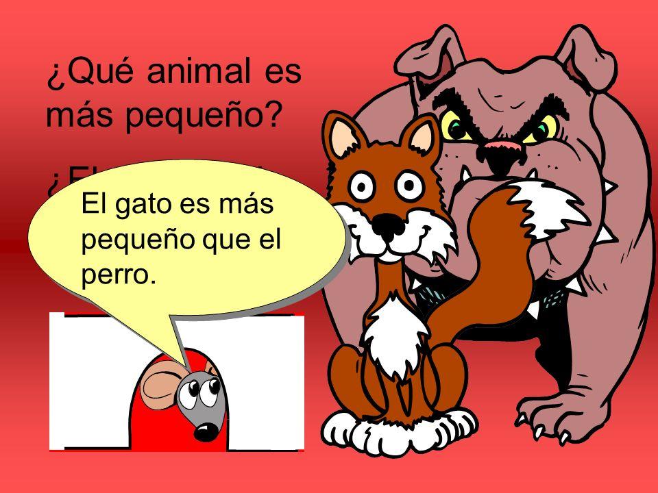 ¿Qué animal es más pequeño ¿El perro o el gato