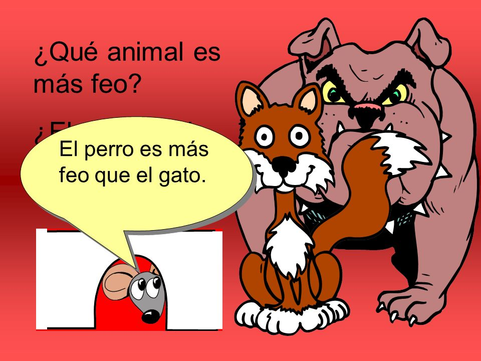¿Qué animal es más feo ¿El perro o el gato